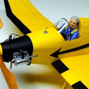 2010年 Jodel ワンメーク飛行大会